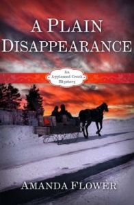 BOOK_COVER_A Plain Disappearance